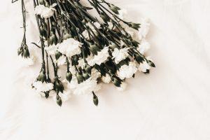 Auckland Celebrant Funerals